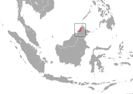 Bornean Water Shrew area.png