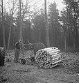 Bosbewerking, arbeiders, boomstammen, karren, Bestanddeelnr 253-5008.jpg