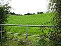 Boshinny Townland - geograph.org.uk - 920970.jpg