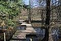 Botanischer Garten Bochum - panoramio (3).jpg