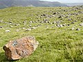 Boulder Field Threlkeld Knotts below Clough Head - geograph.org.uk - 28290.jpg