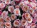 File bouquet de roses wikipedia for Bouquet de fleurs wiki