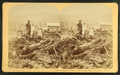 Bourdeau Family, Owl's Head Slide, Jefferson, N.H, from Robert N. Dennis collection of stereoscopic views 7.png