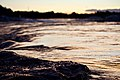 Bow River (43280690101).jpg