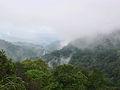 Brahmagiri wildlife sanctuary.jpg