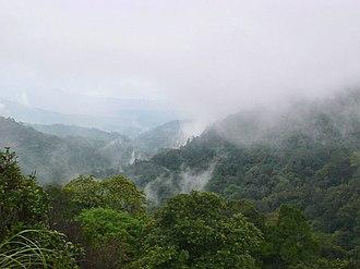 Brahmagiri Wildlife Sanctuary - Valley within the Brahmagiri wildlife sanctuary, Karnataka state