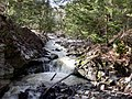 Brant's Falls in March - panoramio.jpg