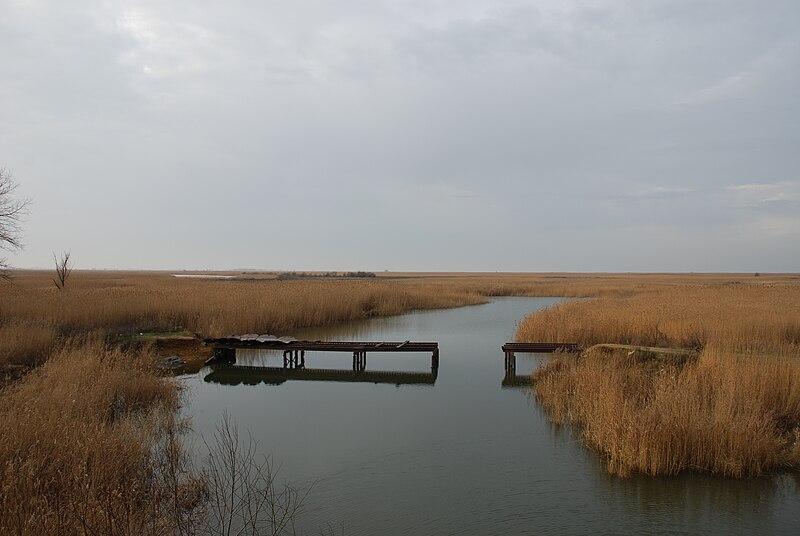 File:Bridge ruins through the Donskoy Chulek River.JPG