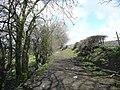 Bridleway, Hopton, Mirfield - geograph.org.uk - 760902.jpg