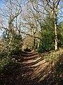 Bridleway north of Commonside - geograph.org.uk - 1098471.jpg