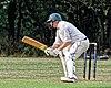 Buckhurst Hill CC v Dodgers CC at Buckhurst Hill, Essex, England 6.jpg