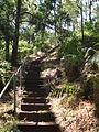 Budj Bim ‐ Mt Eccles National Park, Victoria, Australia 35.jpg