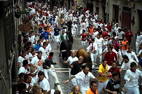 Bull Run Clemson.jpg