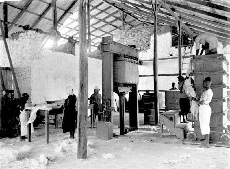 File:Bundesarchiv Bild 105-DOA0381, Deutsch-Ostafrika, Pressen des Sisals in Ballen.jpg