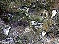 Burial chamber, detail of stone - geograph.org.uk - 1268345.jpg