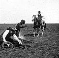 C34f334. Marcando un caballo.jpg