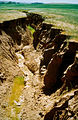 CSIRO ScienceImage 4434 Gully erosion in the Warren Catchment east of Adelaide in the Mount Lofty Ranges South Australia 1992.jpg