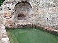 Caldarium pool.jpg