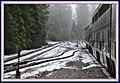 California Zephyr @ Alta - California. - panoramio.jpg