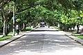 Calle Central la Jagua - panoramio.jpg