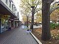 Canberra ACT 2601, Australia - panoramio (8).jpg