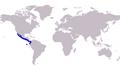 Caranx caninus distribution.png