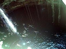 Cenote in Quintana Roo