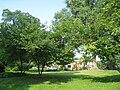 Chatham University Arboretum - IMG 7652.JPG