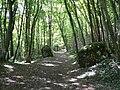 Chemin des champs Allières 1.jpg