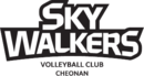 Cheonan Hyundai Capital Skywalkers logo.png