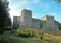 Chepstow castle - geograph.org.uk - 1480766.jpg