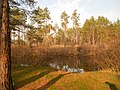 Cherkas'kyi district, Cherkas'ka oblast, Ukraine - panoramio (545).jpg