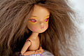 Chocolate SecretDoll Person Wig (8173433343).jpg