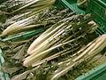 Cicoria catalogna, Italia, supermarket.jpg