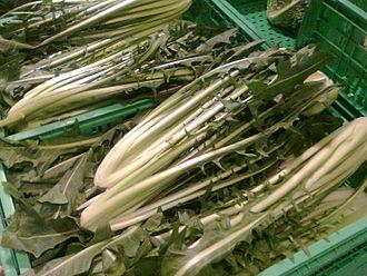 Endive - Image: Cicoria catalogna, Italia, supermarket