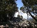 Cim del Ferran (maig 2011) - panoramio.jpg