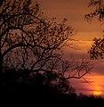 "Cincinnati - Spring Grove Cemetery & Arboretum ""Sunrise"" (4536685369).jpg"