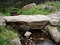 Clapper bridge on the path to Corrie Fee. - geograph.org.uk - 456654.jpg