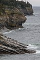 Cliffs in Gaspe - IMG 1284 (15422115618).jpg