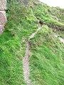 Cliffside path at Port Castle Bay - geograph.org.uk - 1552343.jpg