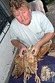 Clive barlow owl apr2006.jpg