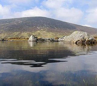 Cloghernagh Mountain in Wicklow, Ireland