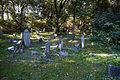 Cmentarz sienna 16.jpg