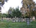 Cmentarz zydowski - Pruszkow - zabytek - 2.jpg