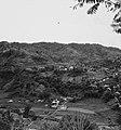 Collectie NMvWereldculturen, TM-20001022, Negatief- 'Gezicht op het dorp met rijstvelden', fotograaf Boy Lawson, 1971.jpg