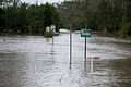 Colleges Crossing Flooded-13.jpg