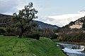 Collodi e Villa Garzoni panorama.jpg