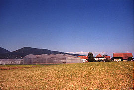 Commune d'Arthaz.jpg