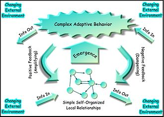 Complex adaptive system - A way of modelling a Complex Adaptive System. A system with high adaptive capacity exerts complex adaptive behavior in a changing environment.