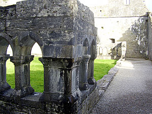 Cong Abbey - Image: Cong Cloisters